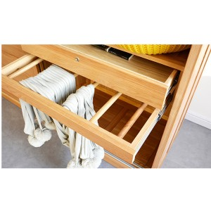 Push-pull drawer + solid wood hanger